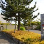 神奈川県立近代美術館葉山駐車場