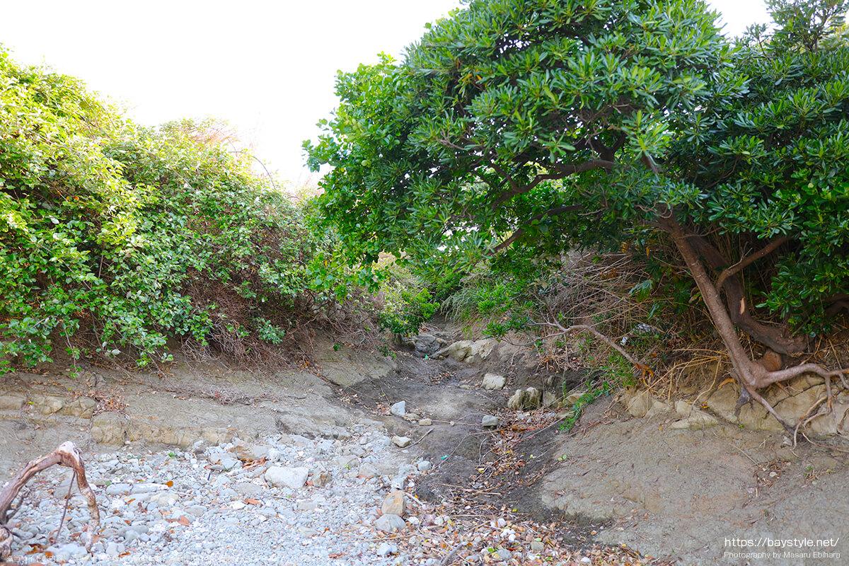 長者ヶ崎海水浴場の岬の様子