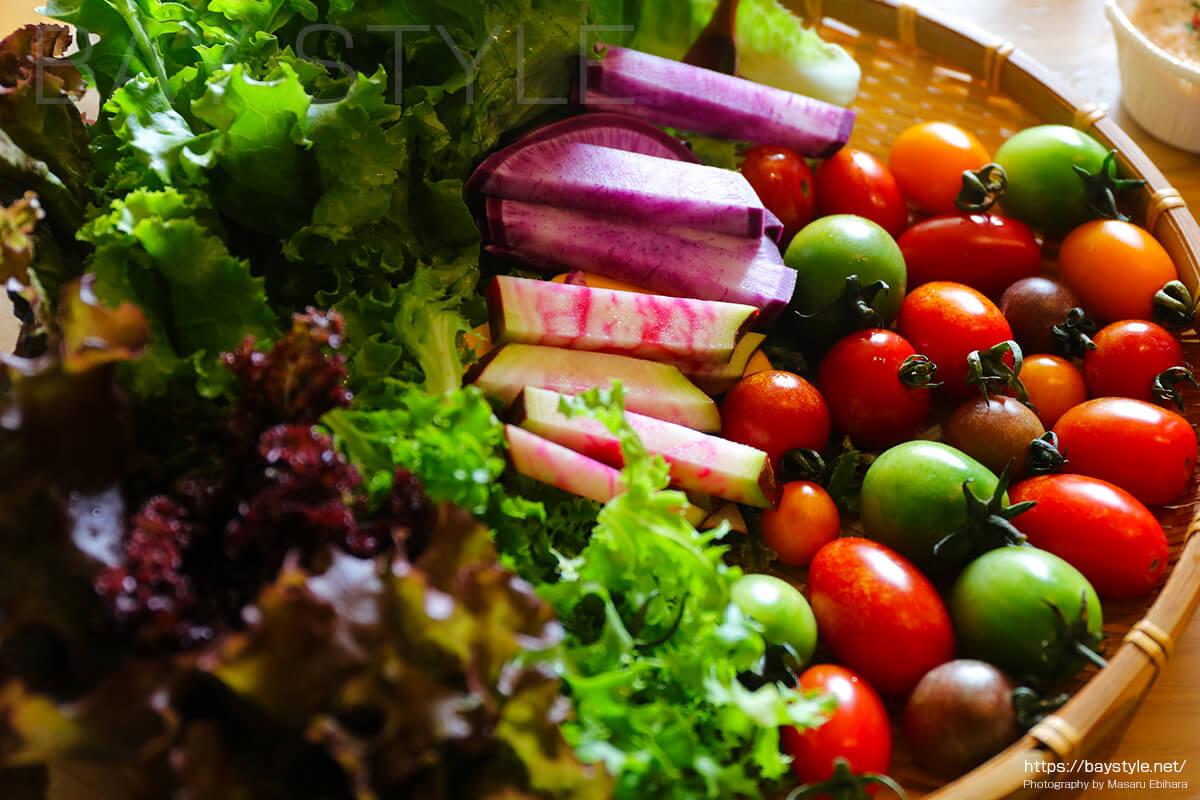 鎌倉野菜とは?他の野菜と何が違うの?