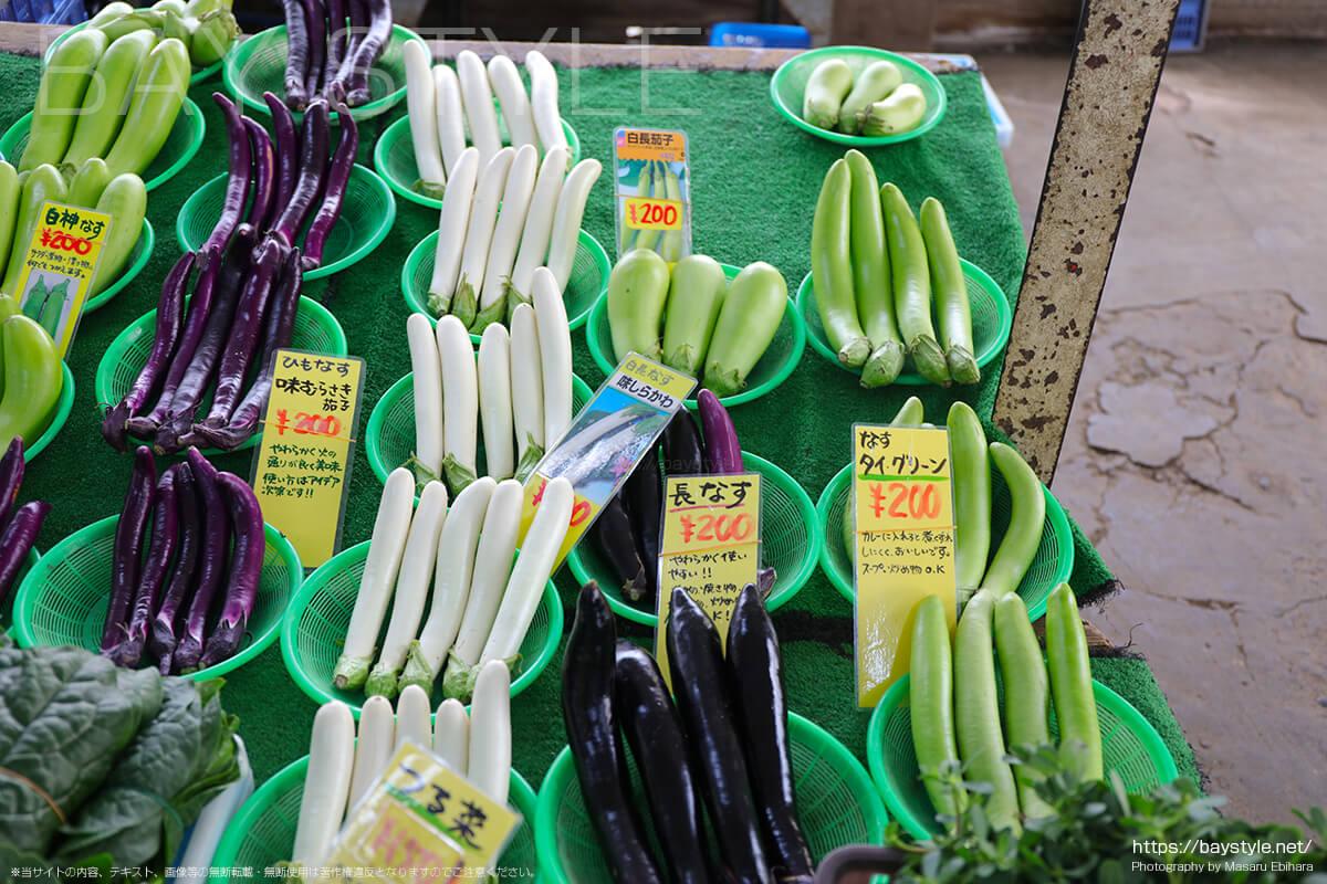 長なす、白長なす、タイグリーン、味むらさき茄子、白神なす