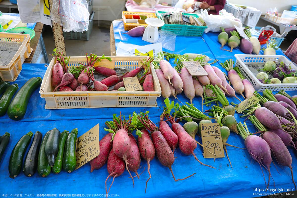 鎌倉野菜として販売されている大根