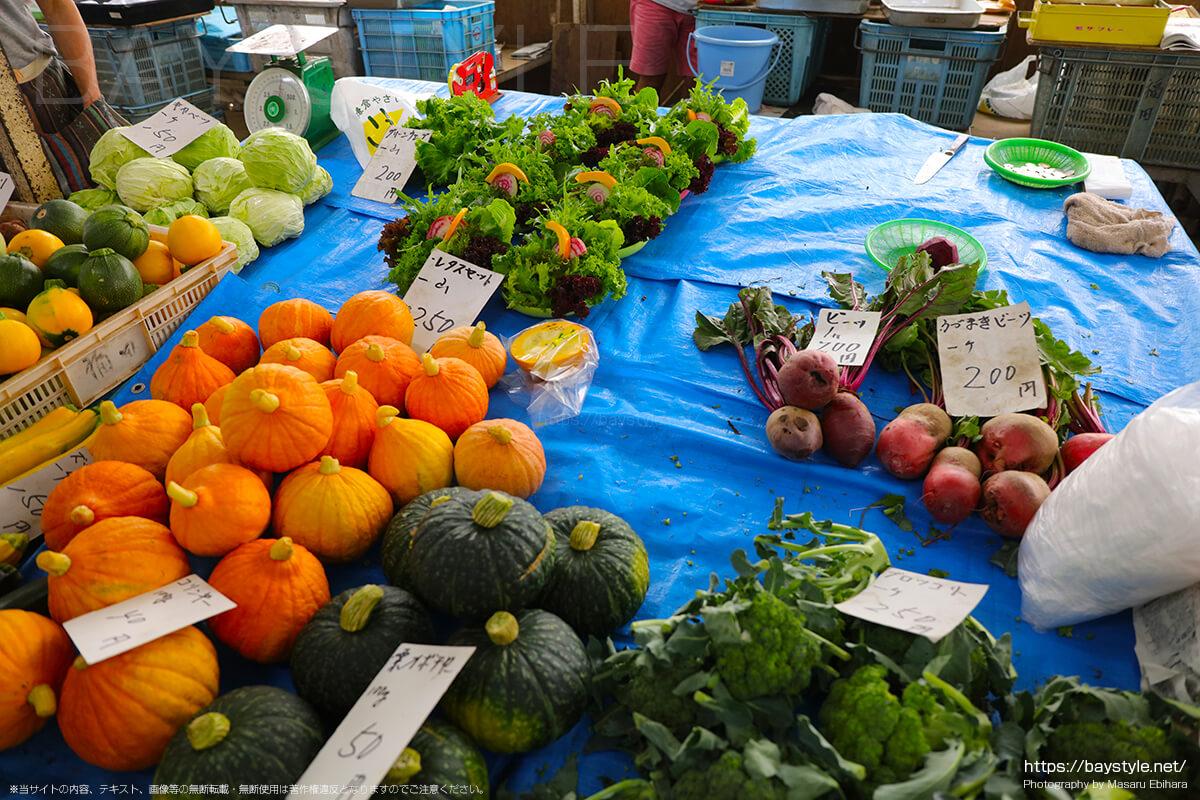 鎌倉野菜の種類