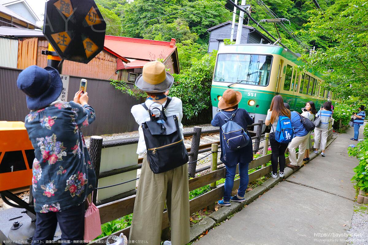 江ノ電の線路沿いに咲くあじさいと江ノ電を撮影する人たち
