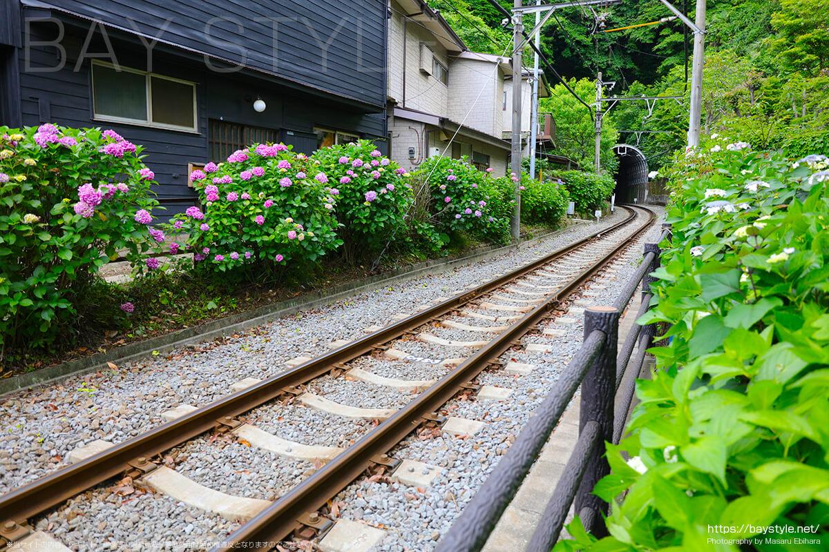 6月1日に撮影した江ノ島方面の江ノ電の線路