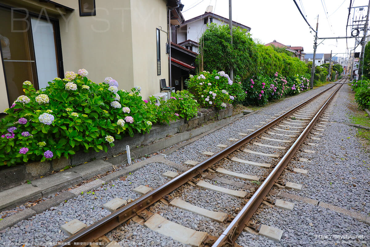 6月1日に撮影した鎌倉方面の江ノ電の線路