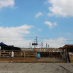 AONOVA、鎌倉由比ヶ浜海の家